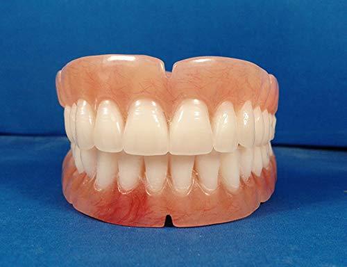 Dentures, Set of False Teeth with Hollywood White Shade Teeth