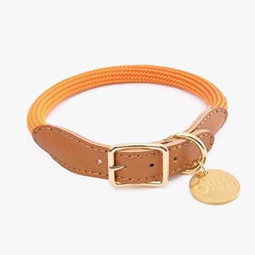 K-ONE Stunt Welpen Kuh Leder Kletterseil Hundehalsband Leine Große kleine Hunde Haustier Sicherheitsgurt handgenäht Hochwertiges Halsband, Orange, L.