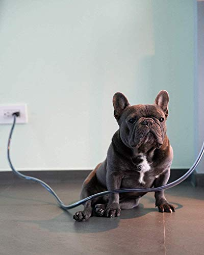 PetCords Robuster, extra starker Kabelschutz für Hunde und Katzen, schützt Ihre Haustiere vor dem Kauen durch isolierte Kabel bis zu 3 m, für kräftiges Kauen, geruchlos.