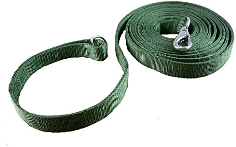 OCSOSO Nylon Pet Lead Durable Classic Dog Cat Leash Green (33.3FT)