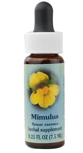 Flower Essence Services Supplement Dropper, Mimulus, 0.25 Ounce (0.25 Ounce Flower Essence)