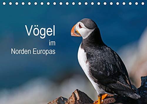 Vögel im Norden Europas (Tischkalender 2021 DIN A5 quer)
