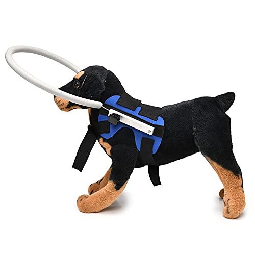 DERCLIVE Accesorios para perros ciegos Chaleco arnés de perro anti-colisión cabeza protección anillo herramienta de prevención de accidentes para perros pequeños, medianos y grandes, S/M