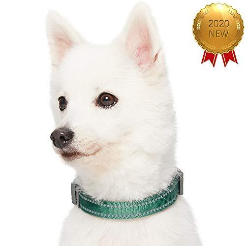 UMI. Essential Pastellfarbenes, reflektierendes Hundehalsband in Piniengrün, Large, Hals 45cm-66cm, verstellbare Halsbänder für Hunde