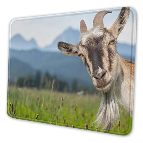Goat Mousepad Funny Personalized Goat in Grass Scene Picture Design Anti Slip with Stitched Edges Mousepad Cute Desk Pad Keyboard Mat for Work & Gaming & Gift