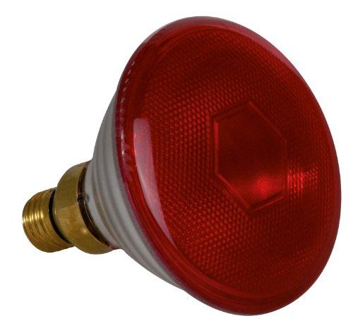 SYLVANIA 0033014 Infrarotlampe PAR38 150W E27, 150 W, Hell, 11.2 x 11.2 x 14.02 cm