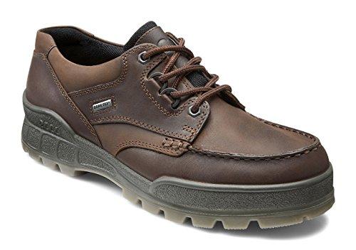 ecco Men's Track II Low GORE-TEX waterproof outdoor hiking shoe, Bison/Bison, 49 (US Men's 15-15.5) M