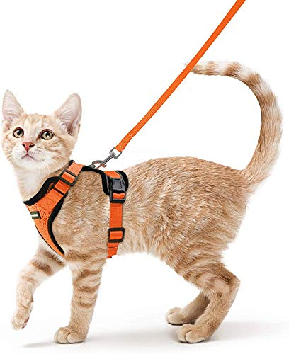 rabbitgoo Cat Harness and Leash for Walking, Escape Proof Soft Adjustable Vest Harnesses for Cats, Easy Control Breathable Reflective Strips Jacket, Orange, XS (Chest: Chest: 13.5