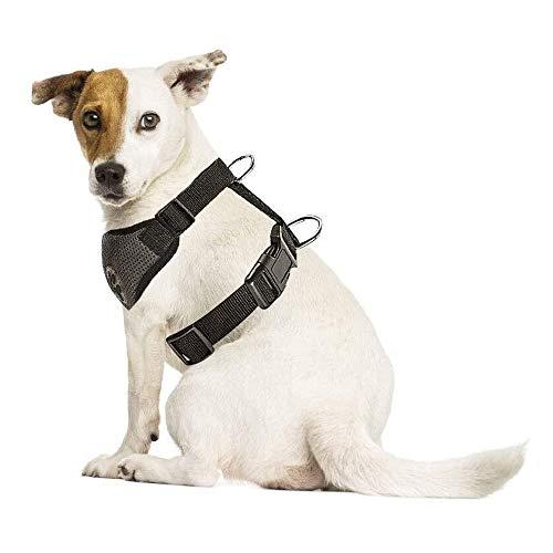 slow Ton arns del perro con cinturn de seguridad Double luftdurchlssiges ltex tejido rejilla de cocina coccin