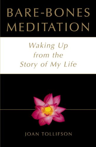Bare-Bones Meditation: Waking Up from the Story of My Life (English Edition)