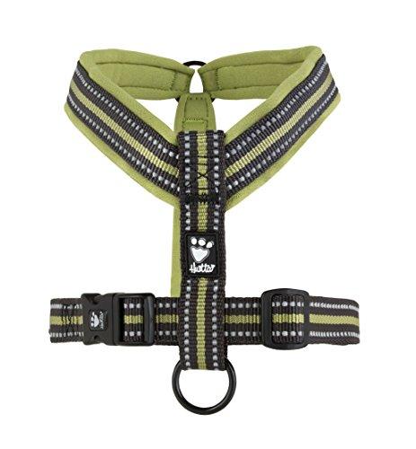 Hurtta Hundegeschirr, gepolstert, Y-Form, Birkengrün, 90cm
