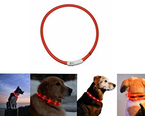 Orchidtent Led-hondenhalsband met USB-aansluiting, oplaadbaar, waterdicht, in lengte verstelbaar, Rood