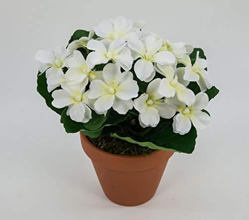 Seidenblumen Roß Impatiens/Fleißiges Lieschen 22cm weiß-Creme im Topf LM Kunstpflanzen Kunstblumen künstliche Blumen Pflanzen