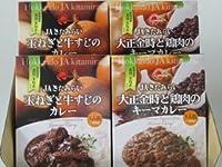 北海道名産品 ご当地カレー カレーセット 4食入