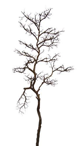 Flair Flower Braun Dekozweig Deko-Baum Bodenvase Zweig Äste Weihnachtsdeko Kunstblumen Künstliche Blumen für Vase, 35x47x110 cm