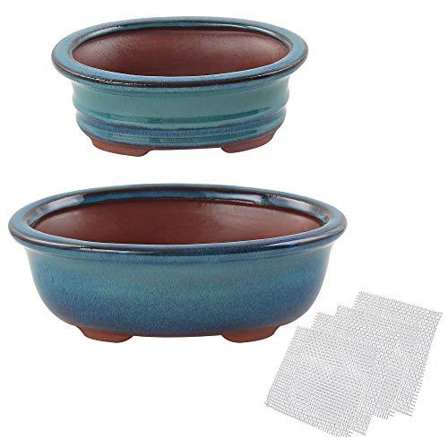 Happy Bonsai Glasierte Töpfe, 15,2 cm, 20,3 cm, 2er-Set + 4 weiche Drainagesiebe.