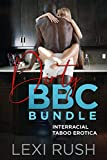 Dirty BBC Bundle: Interracial Taboo Erotica