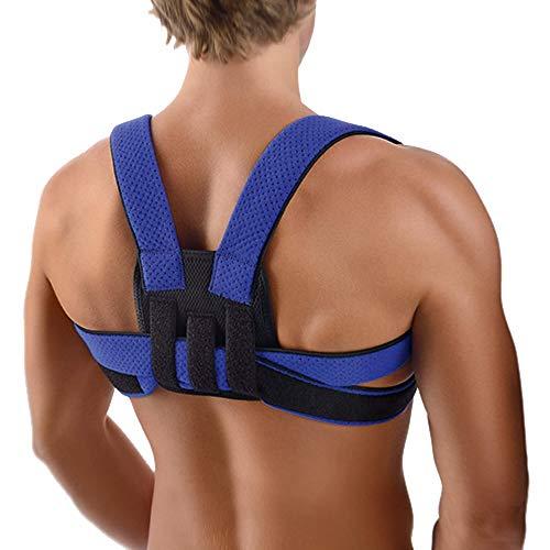 BORT StabiloFix Bandage Erwachsene blau 1 St Bandage