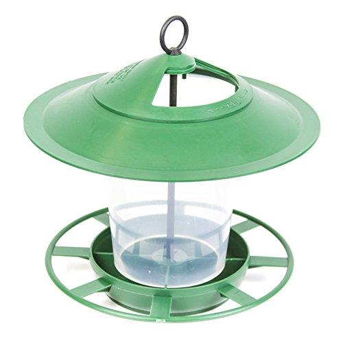 Etree Hanging Lantern Bird Feeder - The Ideal Small Bird Seed Feeder (Green)