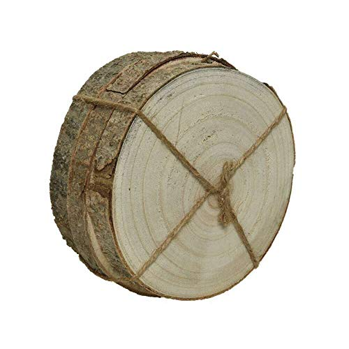 Kaemingk Paulownia Wood Bark S 551536