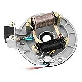 Bobina de encendido magneto, rotor de bobina de encendido magneto de recogida de placa de estator JH70 para Pit/Dirt Bike 70cc 90cc 110cc 125cc