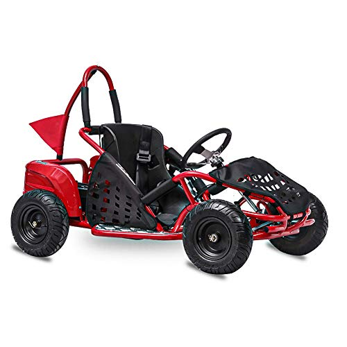 FITRIGHT 2020 79cc 2.5 HP, 4 Stoke Go Kart, Racing Go Cart for Kids with Foot Pedal and Foot Break. (RED)