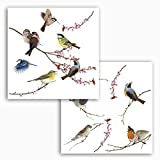 Komar 16003, Bunt Window-Sticker BIRDS Fensterdeko,