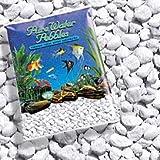 Pure Water Pebbles Platino Bianco Ghiaccio Ghiaia Acquario, 2,3 kg, Ghiaia Colorata per Acquario