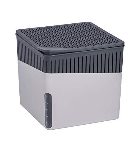 WENKO - Deshumidificador portátil para cubos, absorbentes de humedad para el hogar, armarios, cajas fuertes y coches contra el olor y el moho, color gris