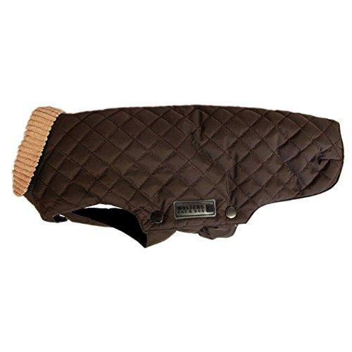 Wolters | Windsor - braun | Rückenlänge 46 cm
