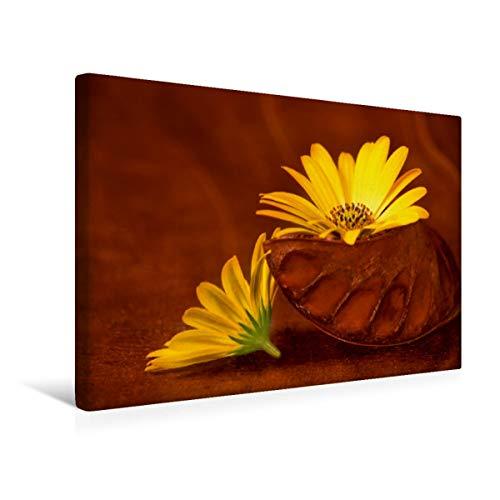 CALVENDO Premium Textil-Leinwand 45 cm x 30 cm quer, EIN Motiv aus dem Kalender BlumenART   Wandbild, Bild auf Keilrahmen, Fertigbild auf echter Leinwand, Leinwanddruck: Duo Natur Natur