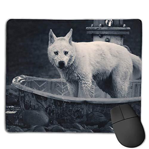 Mauspad Netter Hund Nehmen Sie eine Dusche Rechteck Gummi Mousepad Gaming Mauspad mit schwarzer Verriegelungskante