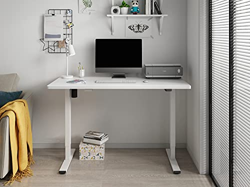Flexispot EC1 Höhenverstellbarer Schreibtisch...
