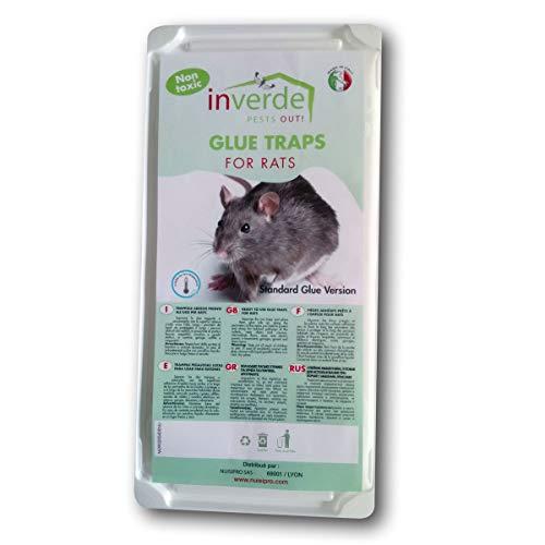 Lote de 2 placas plástico Glu anti rata y anti ratón – Nuisipro