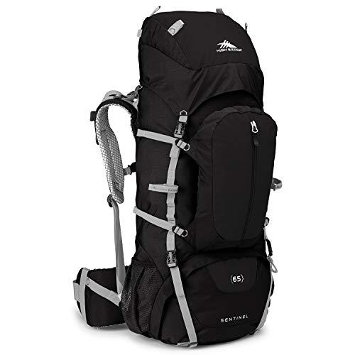 High Sierra Sentinel Backpack