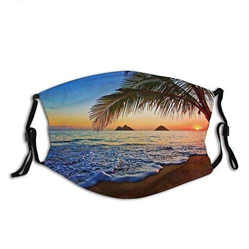 Funny Activated Carbon Filters mask,Hawaiian,Pacific Sunrise at Lanikai Beach Hawaii Colorful Sky Wavy Ocean Sur Scene,Blue Brown,Facial Decorations for Adult Senior