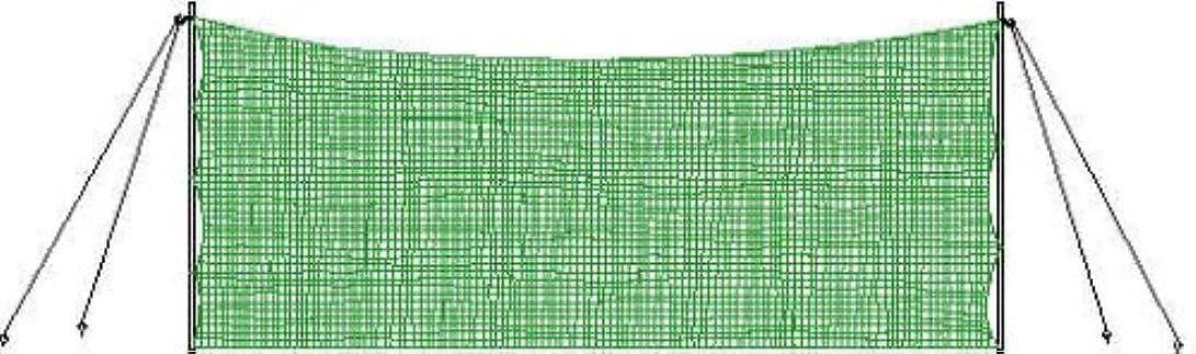 野菜キラウエア山ハウジングSSK(エスエスケイ) 野球 グラウンド備品 バックネット グリーン SN019G