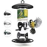 corazón animal salvaje | Comederos para aves de comida de grano, 26 cm, con plazas de acero inoxidable, columna de alimentación para pájaros [negro]