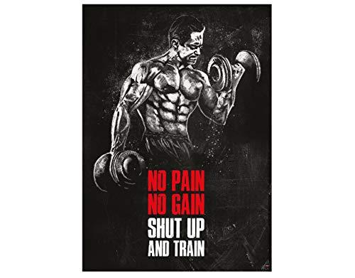 GREAT ART Affiche de motivation 59,4 x 42 cm - format A2 pour studio de fitness ou salle de formation citations de motivation - no pain no gain shut up and train - n ° 8