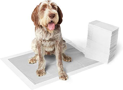 Amazon Basics - Tappetini igienici con carbone attivo per l'addestramento di cagnolini e altri animali domestici, misura extra-large, 50 pezzi