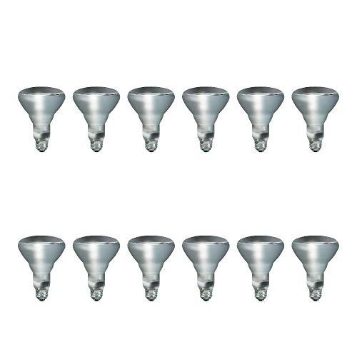 Philips BR30 Indoor Dimmable Flood Light Bulb, 620 Lumen, Soft White Light (2710K), 65-Watt, E26 Base, 12-Pack