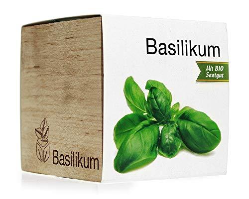 Monsterzeug Basilikumpflanze Saatgut, Ecocube Holzwürfel, Basilikum Samen, Basilikum Anbauen, Frisches Basilikum in ökologischer Holzbox zum Selbersäen