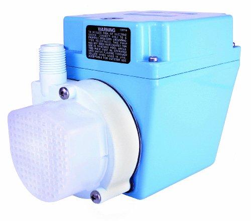 Little Giant 3E-12N-WG Permanently Lubricated Statutory Fountain Pump, 115V