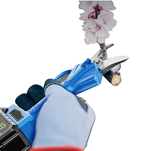 XLOO Tijeras de Podar Eléctricas,diámetro de Corte 30mm (1,2 Pulgadas),Tiempo de Trabajo 8-12 Horas,Incluidas 2 Baterías,Caja de Herramientas,Hoja de Repuesto