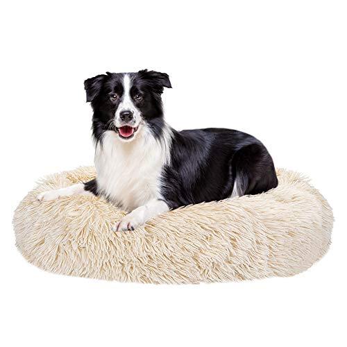 La Mejor Recopilación de Máquinas de perritos calientes disponible en línea. 15