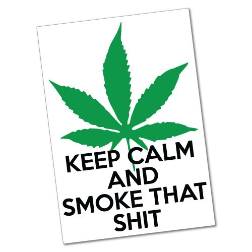 Funny Smoke Weed Sticker Decal 420 Dope Car Funny