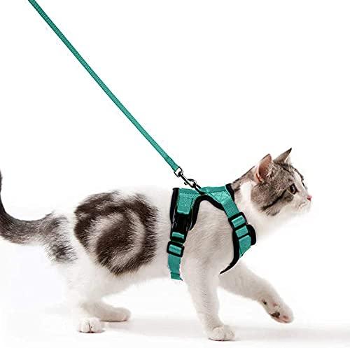 Wdmiya Arnes Gato Antiescape, Arnés para Gato Ajustable con Reflectantes para Caminar, Entrenar, Gato Mediano y Pequeño XS (Verde, XS)