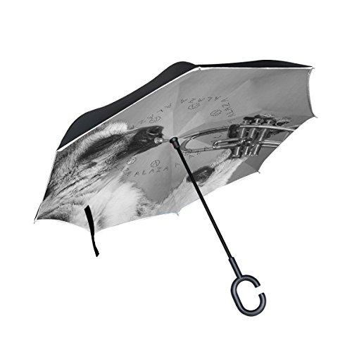 MNSRUU Doppelschichtiger umgekehrter Regenschirm, lustiger Waschbär Spiel, der Saxophon faltbar Regenschirm Winddicht UV-Schutz kopfüber für Auto Regen mit C-förmigem Griff