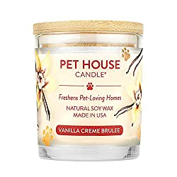 Best Pet Odor Exterminator Candle - One Fur All Pet House Candle