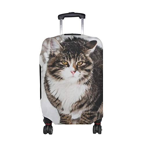 Cat Winter Wind Snow Pattern Print Travel Luggage Protector Baggage Suitcase Cover Fits 18-21 Inch Luggage